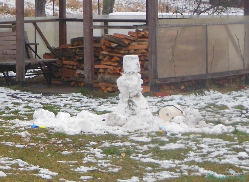 Снеговик в Селютах