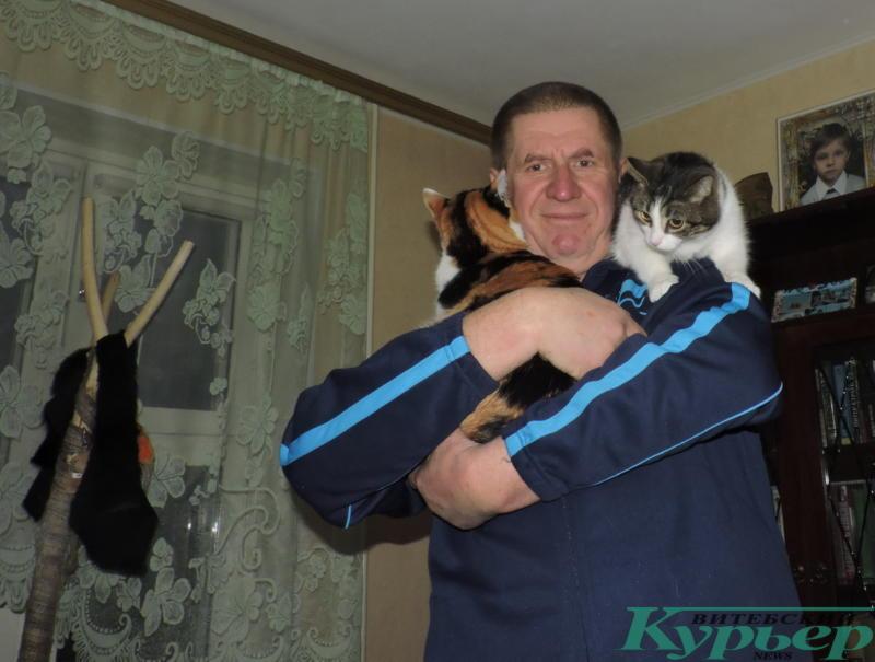 в обнимку с котами