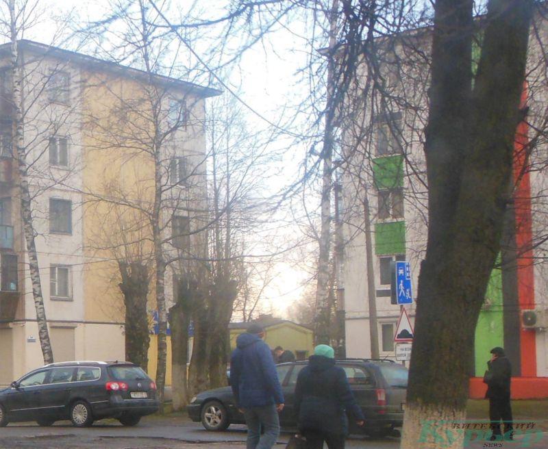 Обрубленные деревья на Московском проспекте
