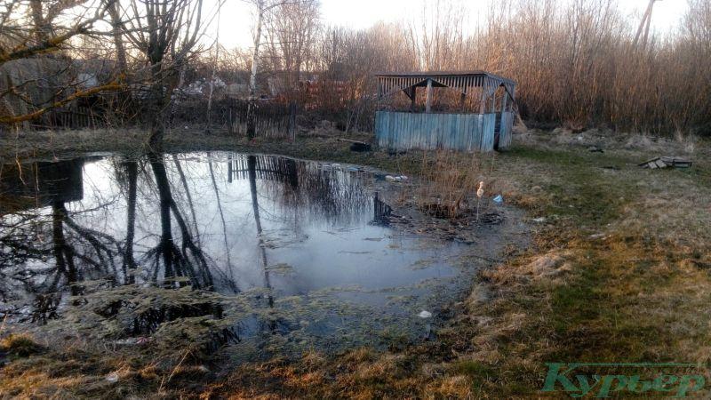 Пруд у заброшенного дома в Билево