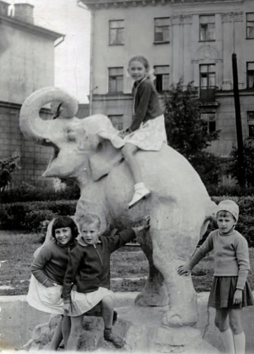 слоненок в парке горовца