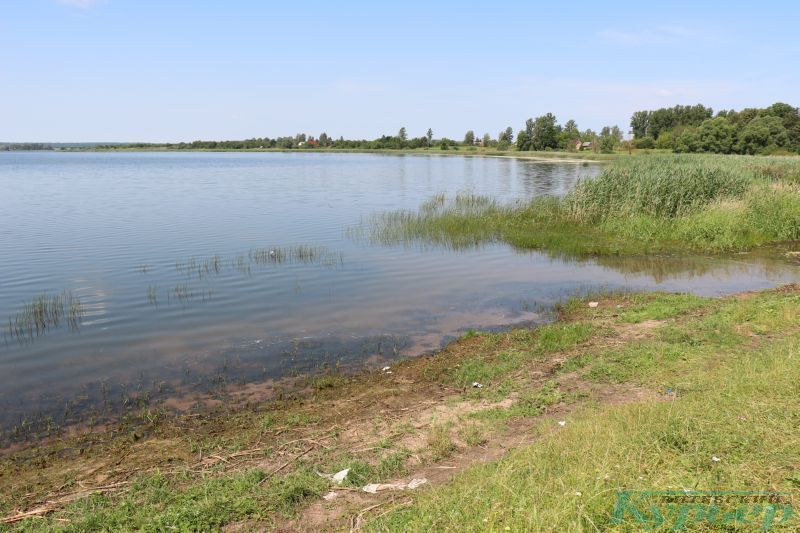 Озеро в Яновичах