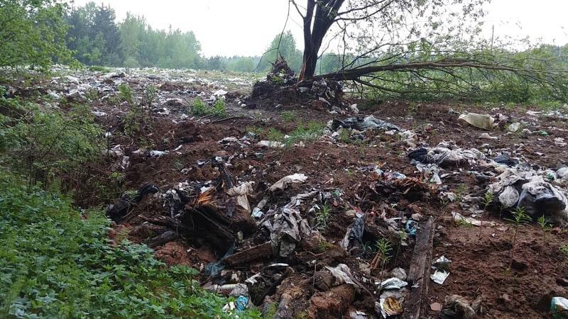 мусор на мусорном полигоне