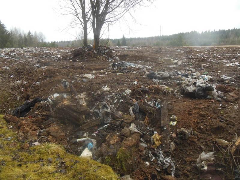мусор на полигоне