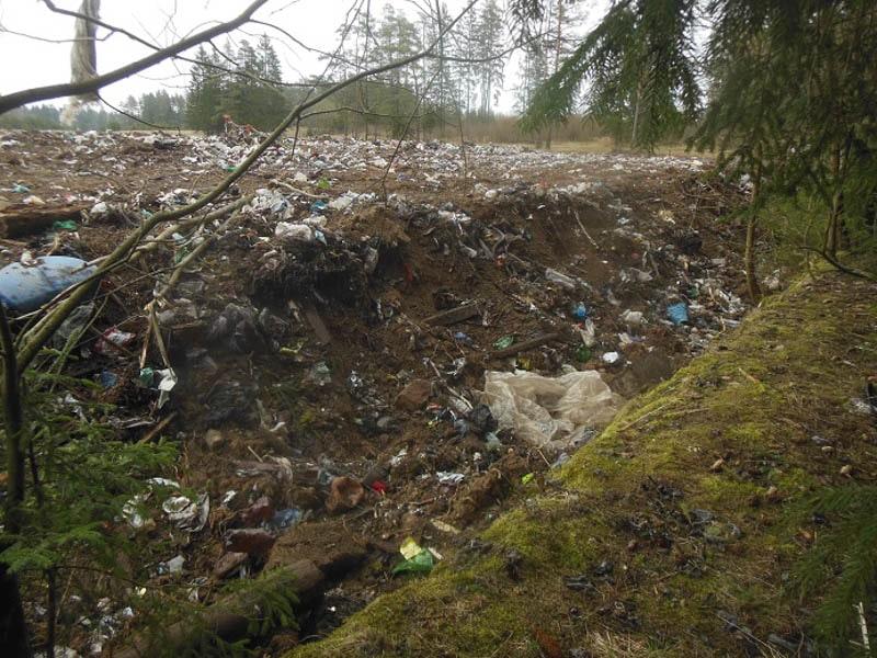 неубранный мусор на свалке