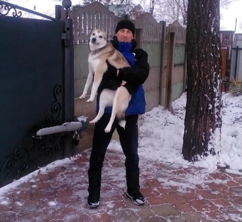 Собака с любимым хозяином