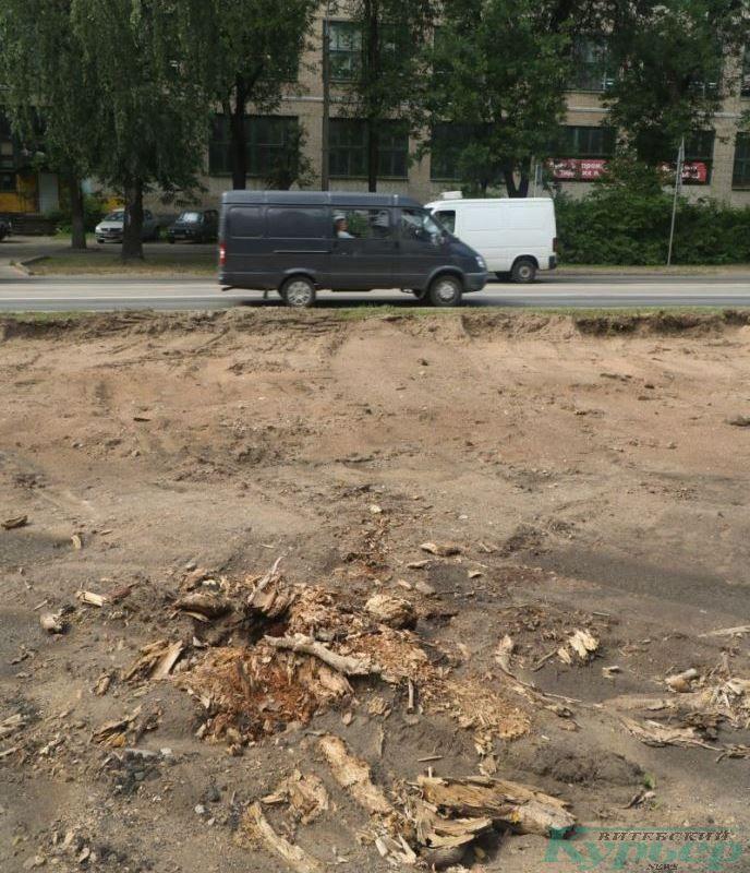 Остатки срубленных деревьев у приборостроительного завода