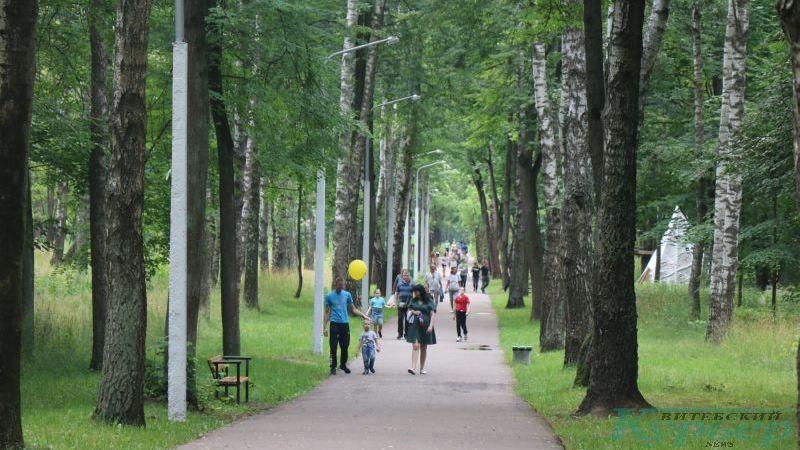 На главной аллее парка