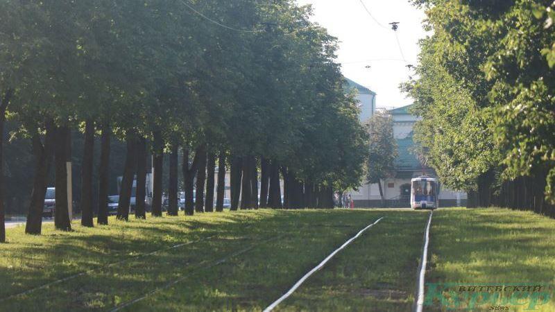 Трамвайные пути на проспекте Людникова