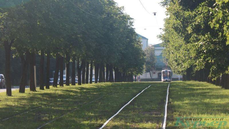 Трамвайная линия на проспекте Людникова