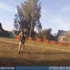 В Докшицком районе мужчина встретил милицию с бензотриммером. Смотрите эпатажное видео от УВД