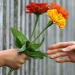 Собираются ли поздравлять учителей в Витебске и что будут дарить