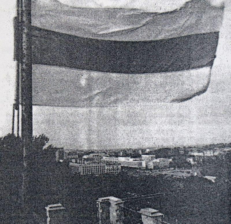Бело-красно-белый флаг над зданием Витебского облисполкома