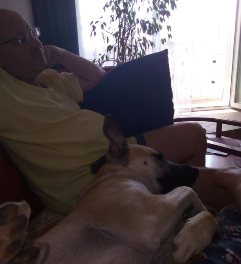 Собака из приюта с хозяином