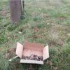 Под Смолевичами нашли коробки с муляжами взрывных устройств